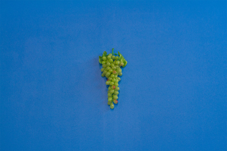Dara-Gill-Sour-Grapes-on-Russels-Red-Detail-2012-Plastic-grapes-acrylic-on-canvas-265cm-x-150cm-LOW-RES3